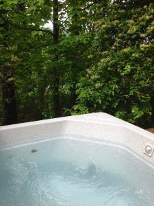 The Pine Hot Tub