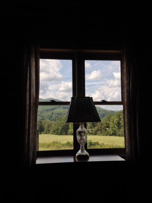 The Poplar Cabin Window View