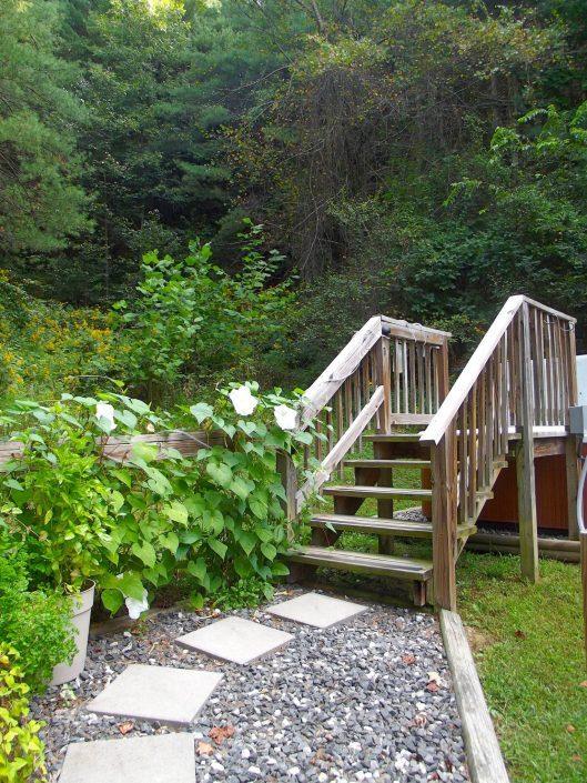 The Cedar Cabin Stepping Stones