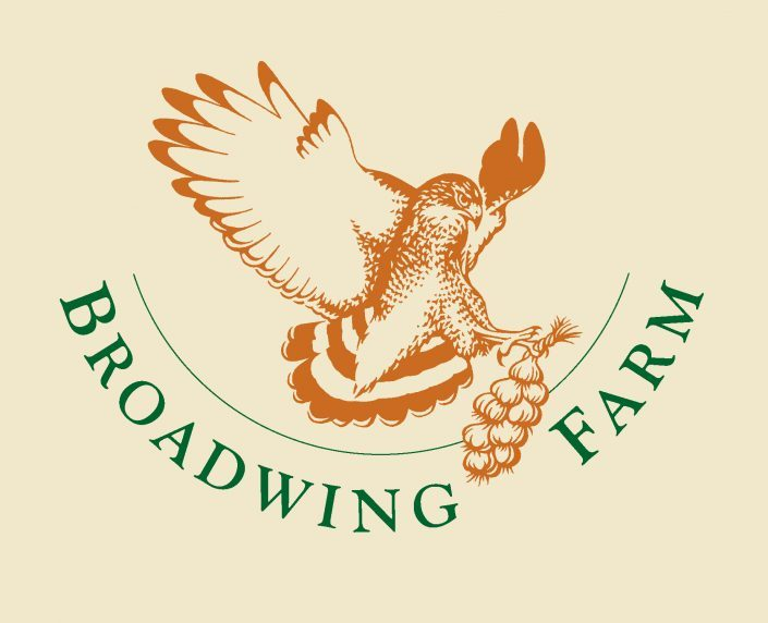 Broadwing Farm Cabins Logo