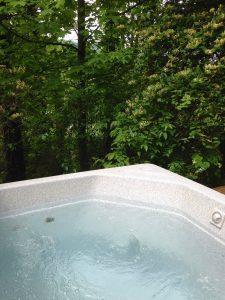 The Pine Hot Tub